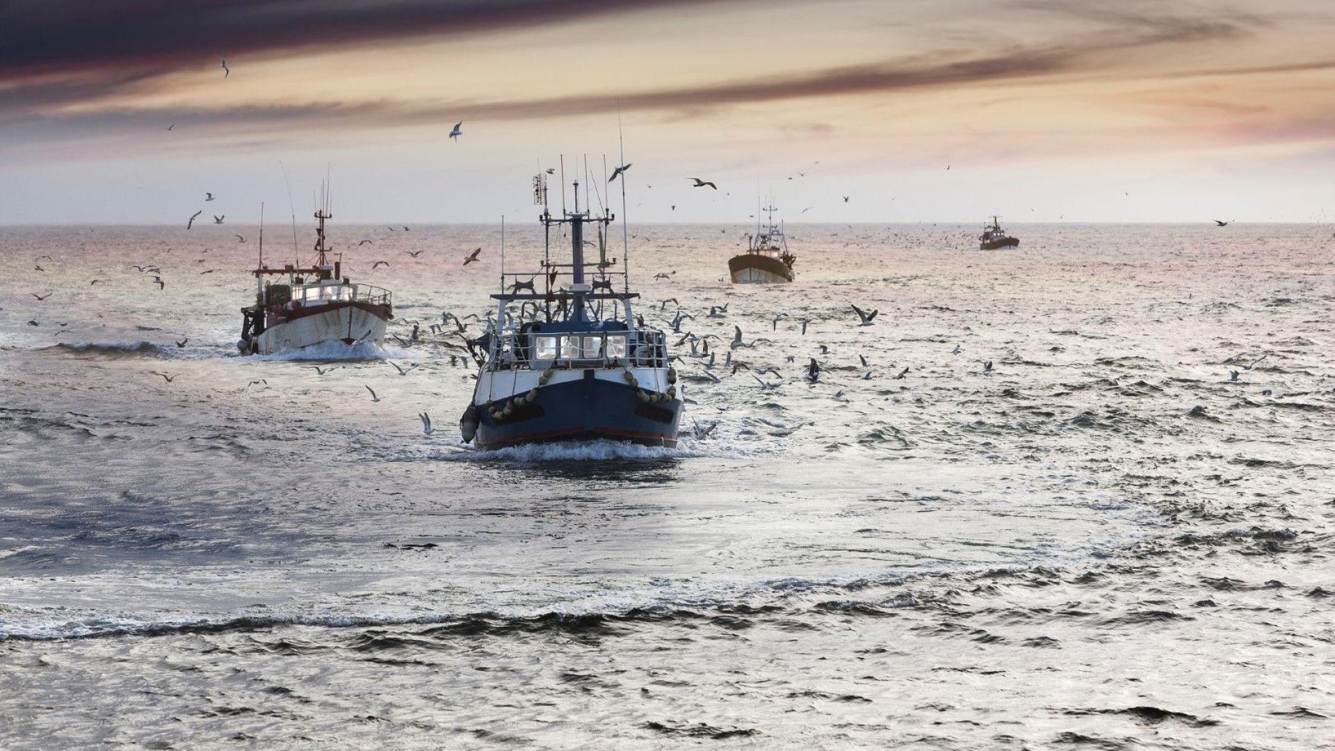 Как рибата препъна сделката между Великобритания и ЕС
