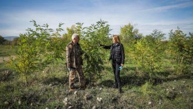 Стотици се включиха в залесителната кампания Новата гора на София