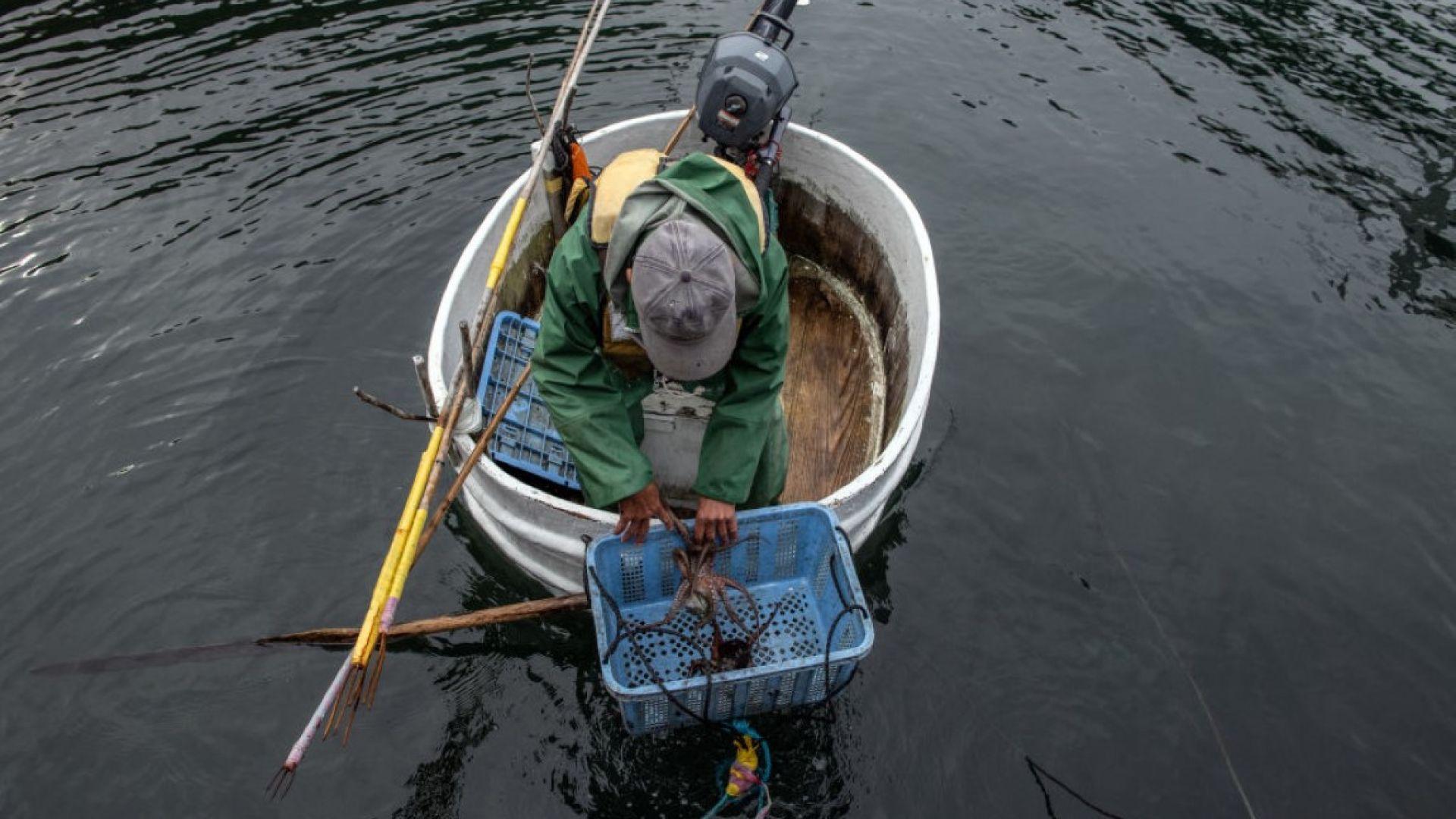Япония: За риба с традиционните лодки-вани (снимки)