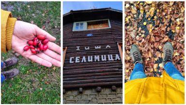 Излез на въздух: Пътека на здравето от Кладница до хижа Селимица