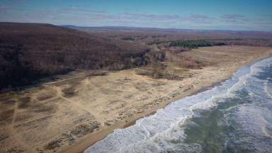 Върнати гори: Държавата си взе 4 имота от спорни заменки за година
