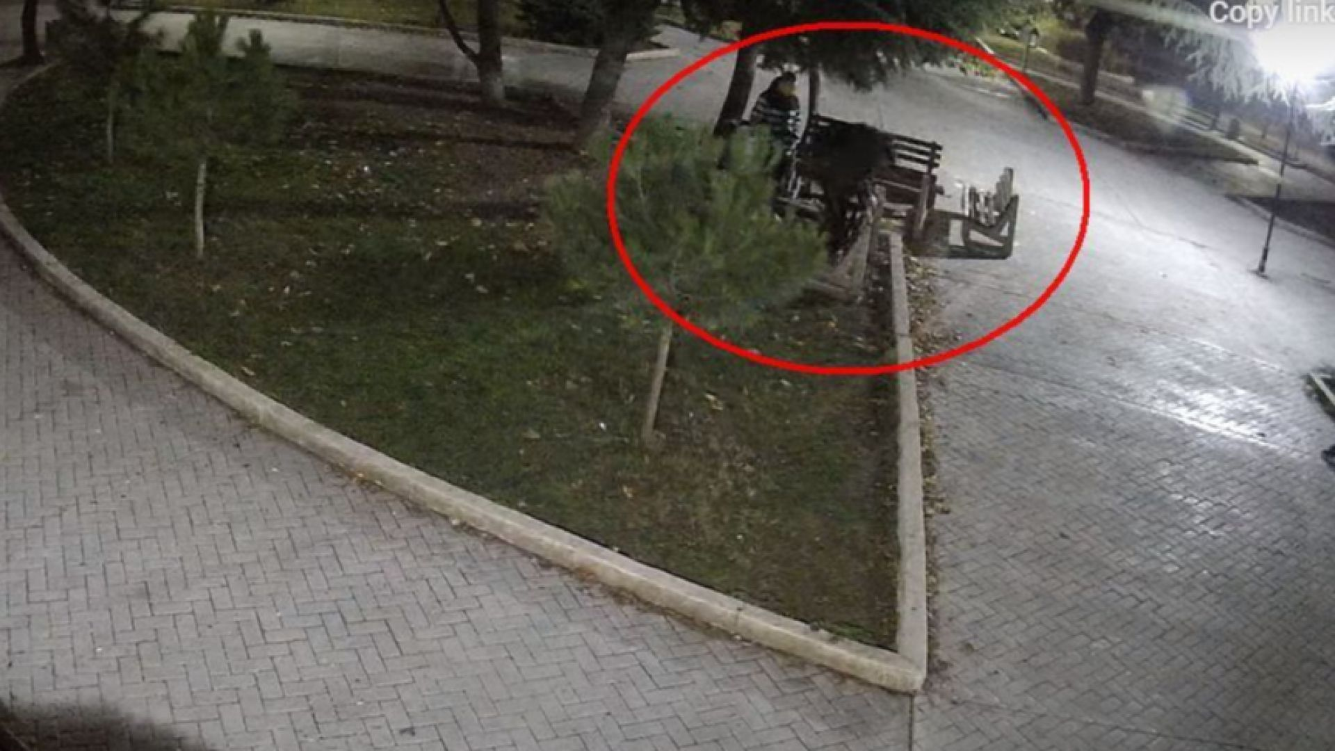 Група тийнейджъри безмилостно, но весело рушат пейки в Бургас (видео)