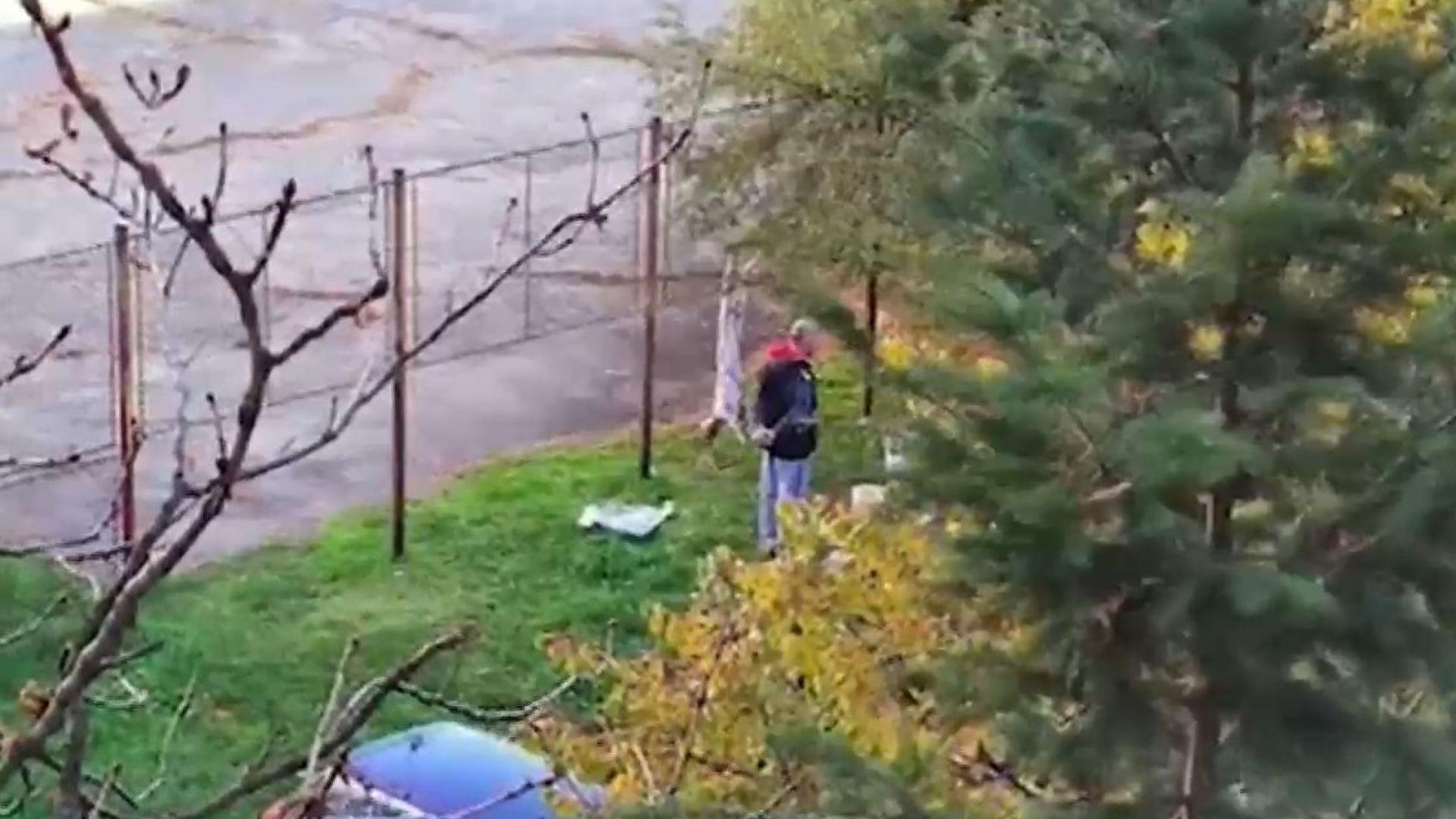 Мъж закла и одра агне до игрище в столичен квартал