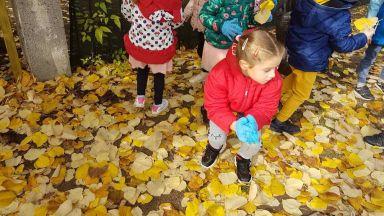 Детските градини в Бургас ще компостират листата на двора