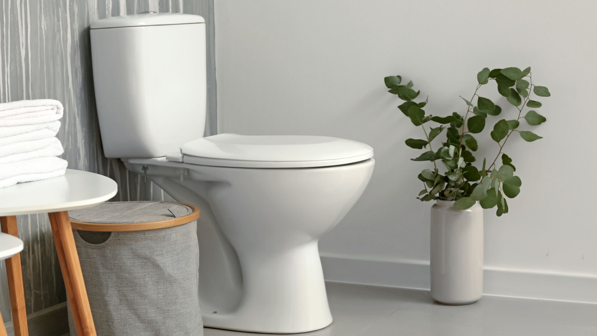 Светът отбелязва Деня на тоалетната