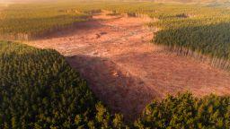 115 държави са поели ангажимент да възстановят около 1 млрд. хектара земя