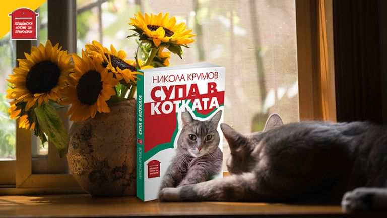 """Пощенска кутия за приказки представя """"Супа в котката"""""""