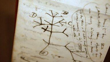 """Университетът на Кембридж търси """"откраднати"""" ценни бележници на Дарвин"""