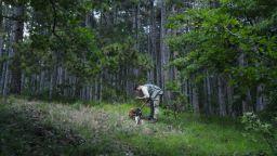 Първа в света по добив, България написа Закон за трюфелите