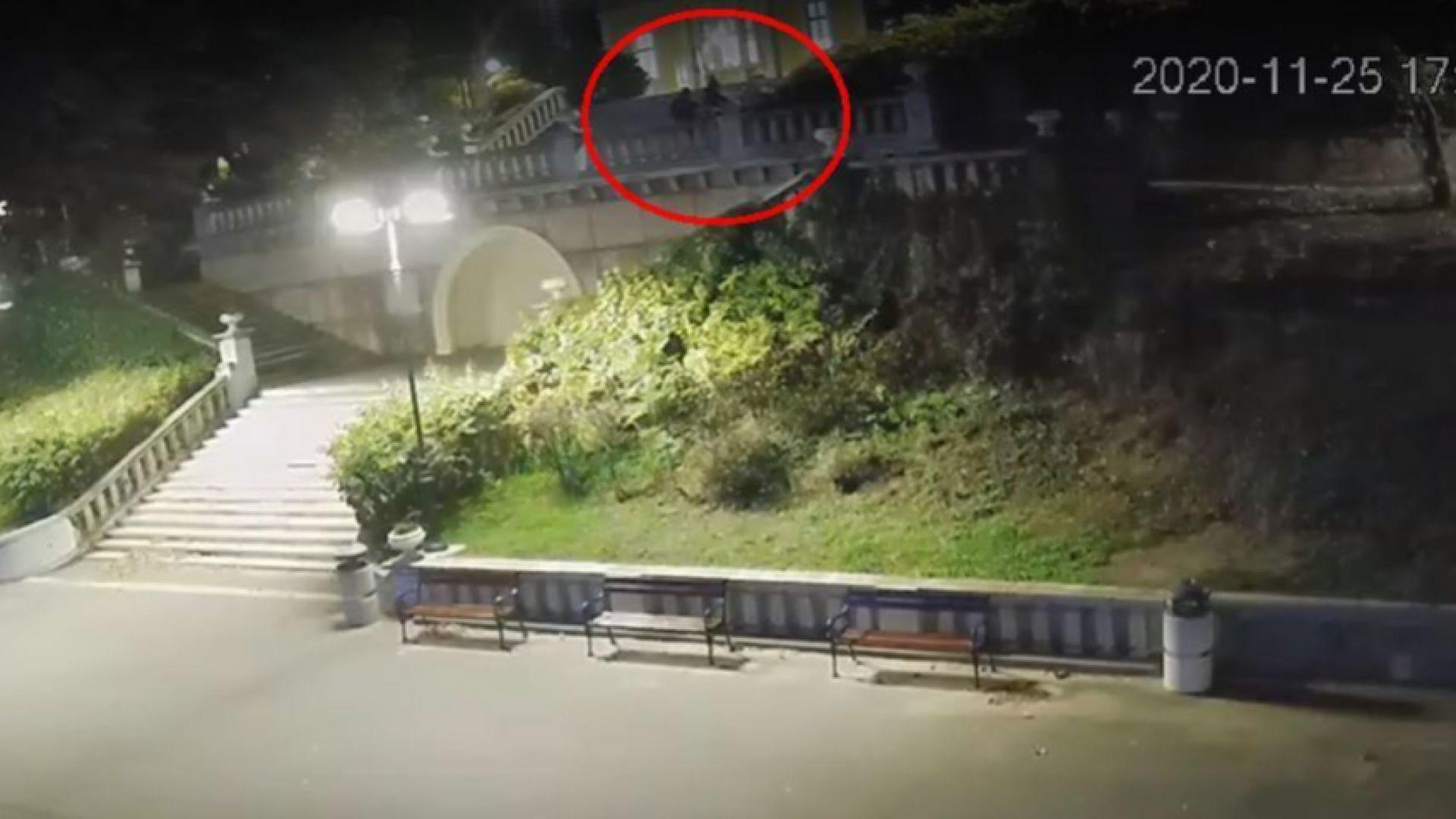 Вандали в Бургас събарят саксии в Морската градина (видео)