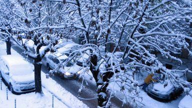 Първи сняг в страната, очакват се натрупвания до 15 см