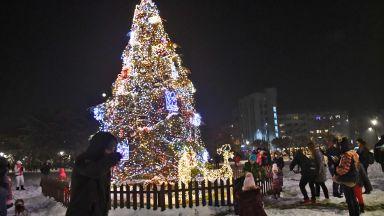 Коледната елха в София светна тържествено