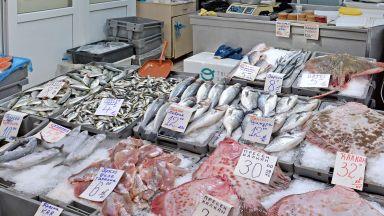 Пазар с прясна риба и морски дарове в София за Никулден