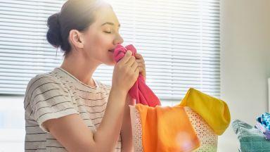 """""""ЧИСТО""""-та или всичко, от което се нуждаят вашите дрехи"""