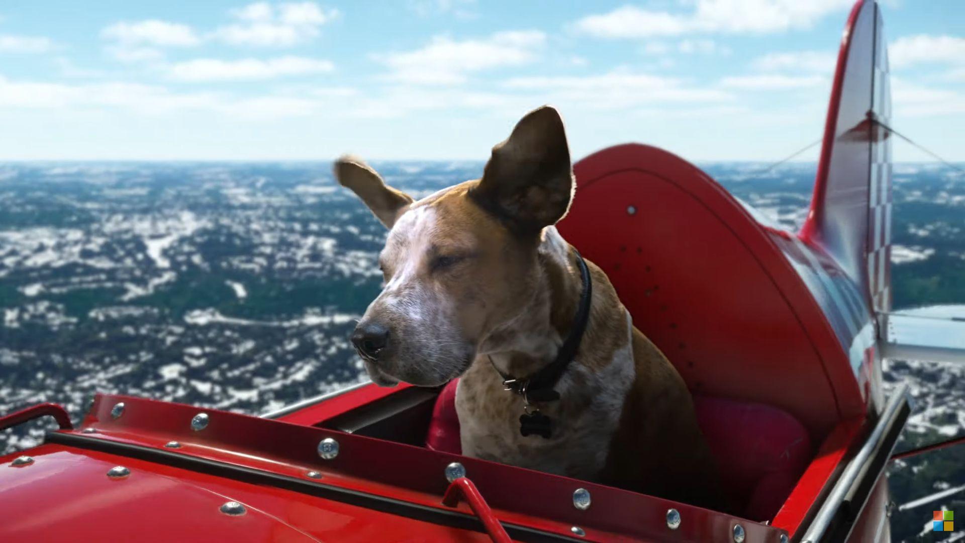 Кучетата имат главна роля в празничната реклама на Microsoft