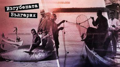 """Минало свършено: Когато десетки хиляди """"жертви"""" късаха рибарските мрежи"""