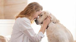 Смарт нашийник анализира кучешкия лай и емоционалното състояние на домашния любимец