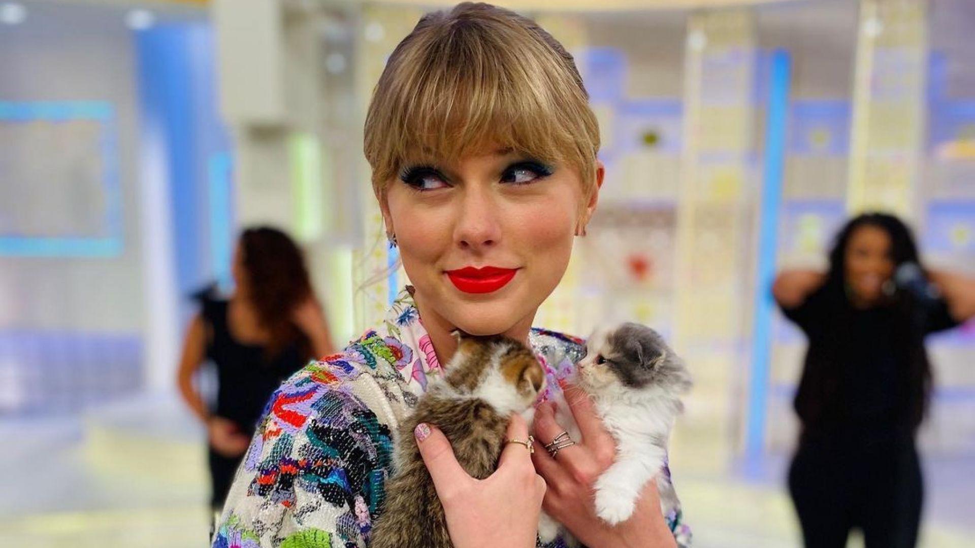 Тейлър Суифт изпраща коледни картички с трите си котки