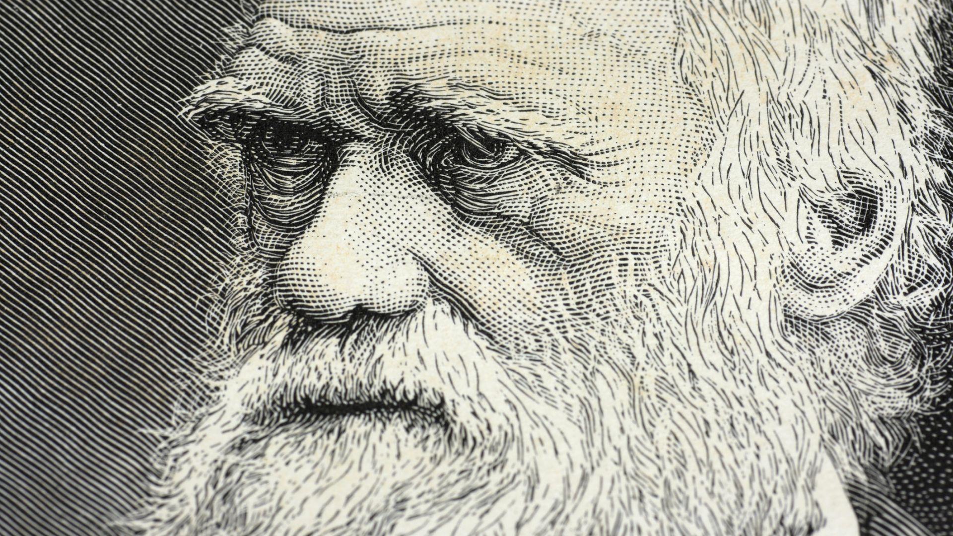 Потвърдиха важна теория на Дарвин