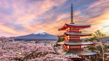 15 красиви японски думи, които са цели философии