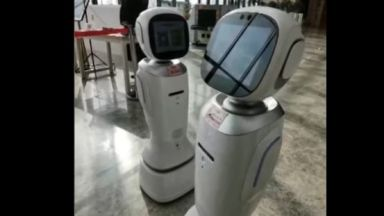 Два робота-библиотекари се скараха (видео)