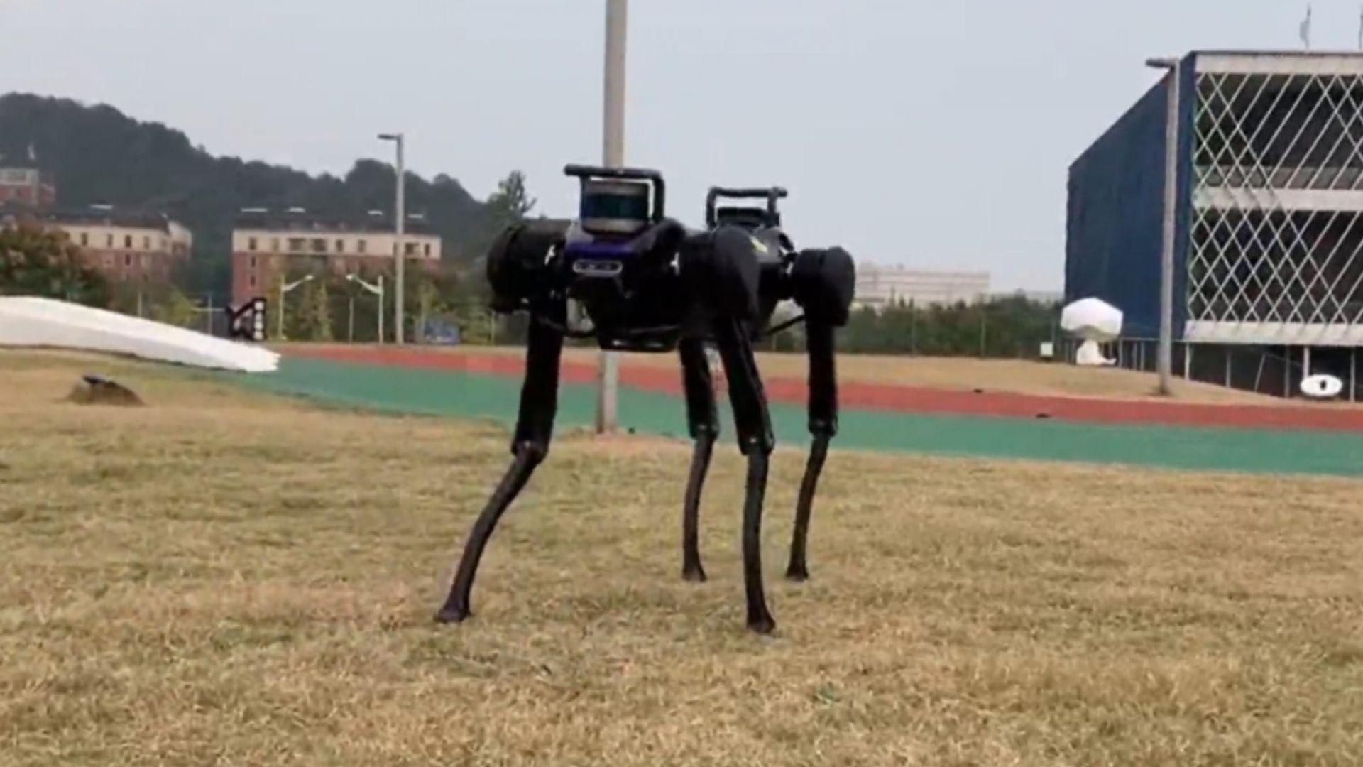 Куче-робот се научи как да се възстанови от нападение (видео)