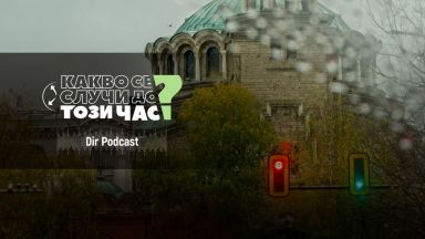 Podcast вот: Над 2/3 от хората обичат да гледат циркови представления