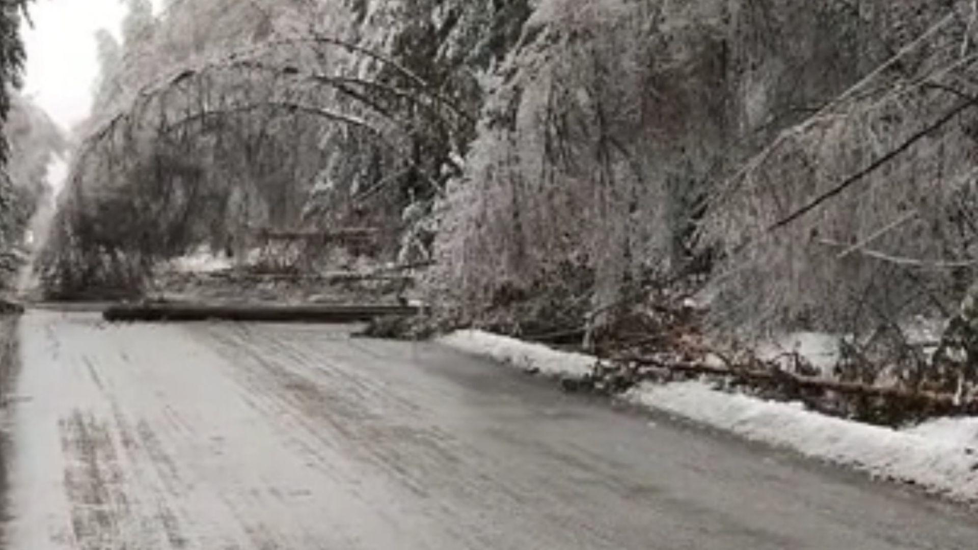 Паднал електрически стълб затвори пътя към Самоков