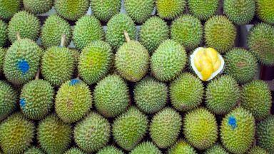 Яли ли сте дуриан - тропическия плод, който мирише на умряло?