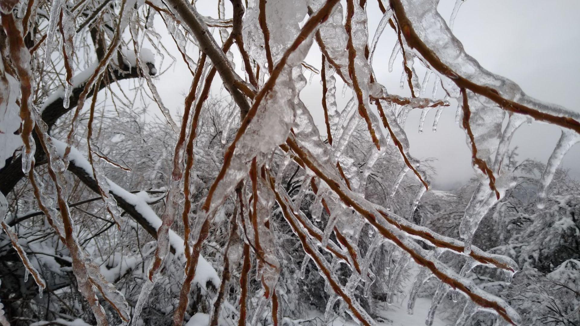 Днес е последният топъл ден, арктическият студ идва от утре