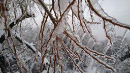 Студът дойде, очакват ни сняг и още по-ниски температури