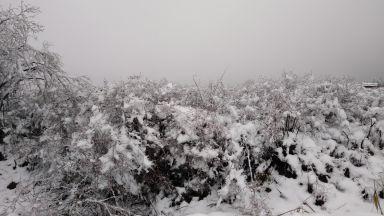 Предстоят ледени дни и температури под минус 15