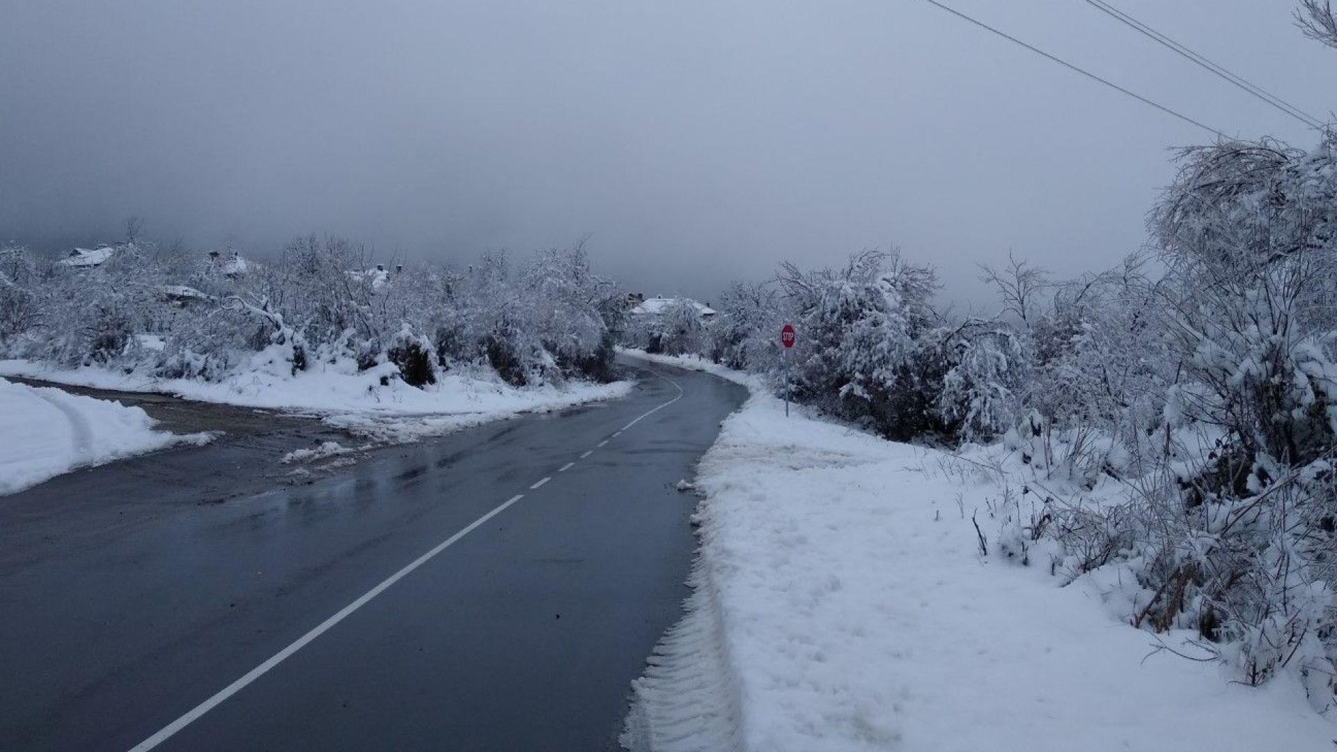 Застудяване, вятър дъжд и сняг в следващите дни