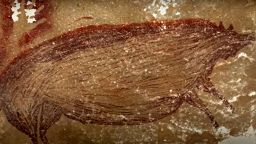 В Индонезия беше открита най-древната пещерна рисунка на 45 хиляди години