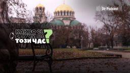 Podcast вотът досега: над 85 процента от българите са засаждали дърво
