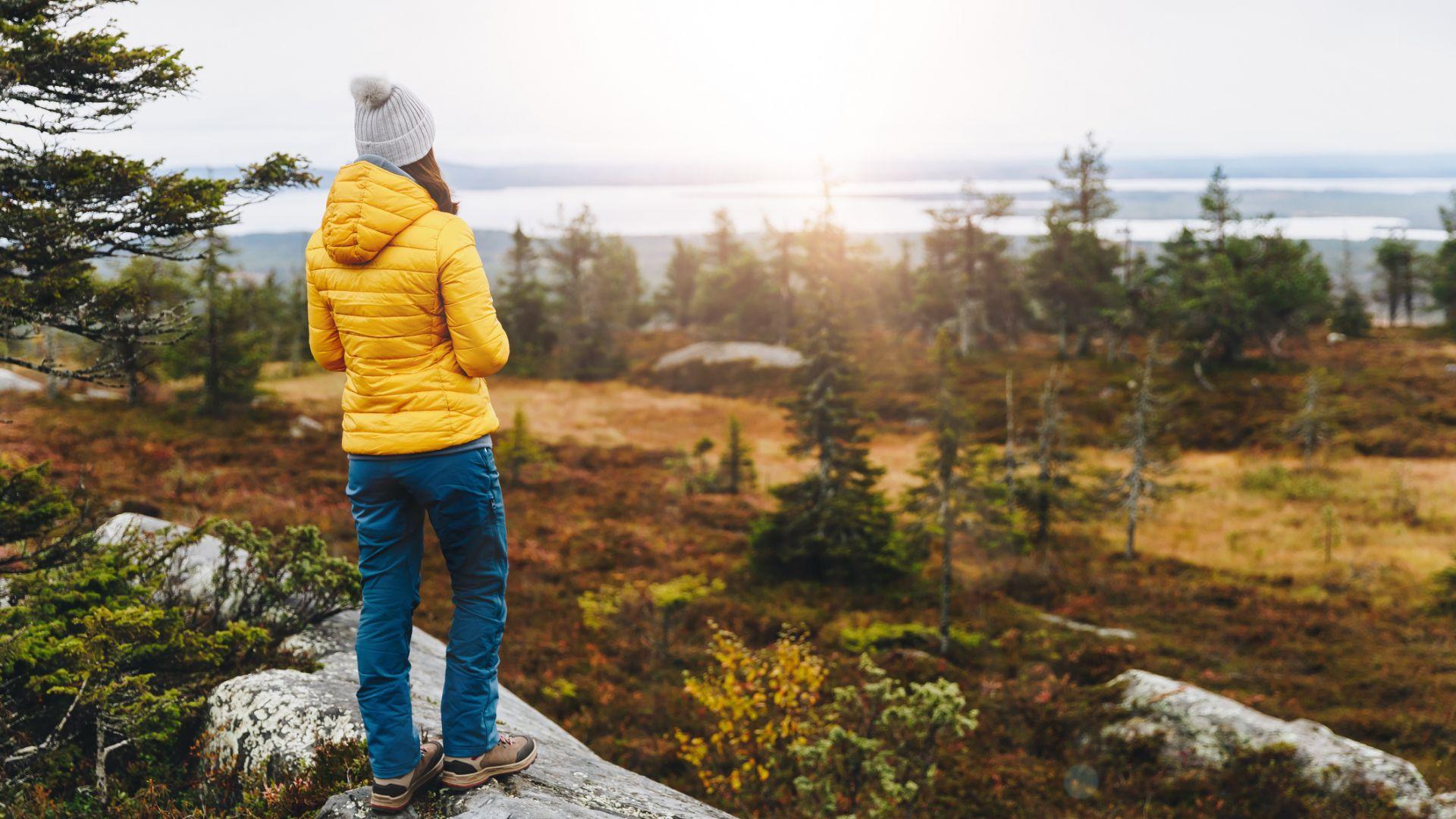 Разходките в парка или гората намаляват стреса от работата