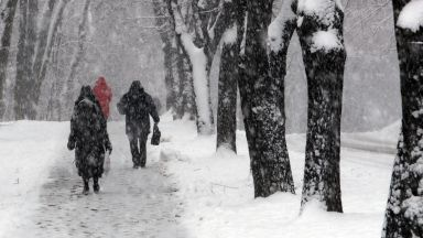 Студ, смог и лавини в Европа причиниха хаос по пътищата