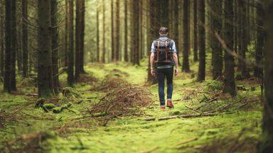 Колко точно време сред природата е нужно, за да сте здрави
