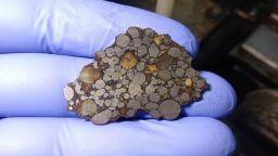 Българи проверяват може ли да се посадят растения в прах от метеорити