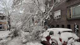 Десетки сигнали за паднали клони под напора на снега в Пловдив