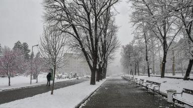 Заради тежък мокър сняг - 250 малки населени места са без ток