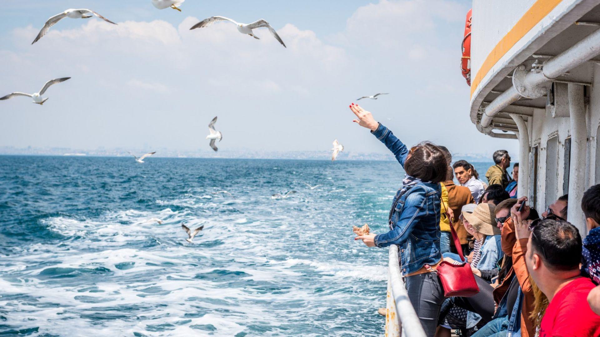 Не пропускайте да запазите малко трохи и за чайките, които неиземнно съпровождат фериботите и се гощават от храната на пътниците.