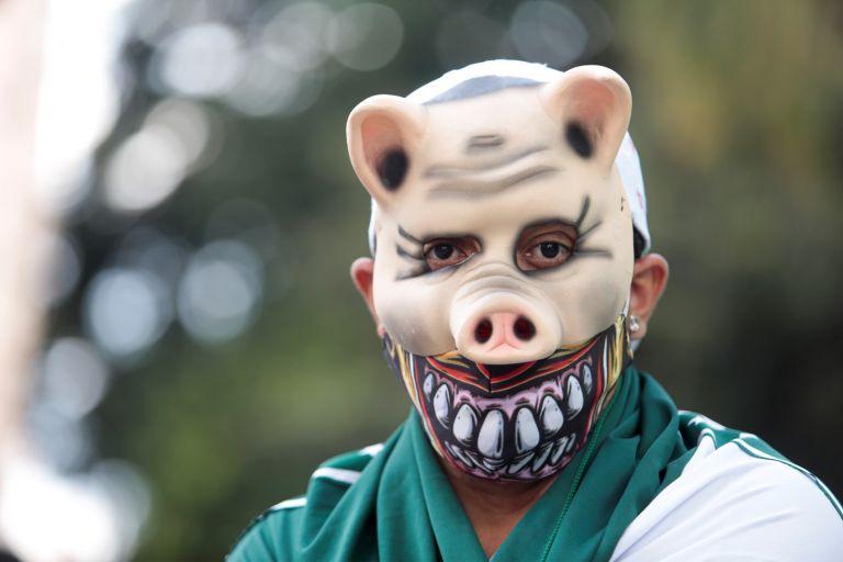 """Прасетата - както са наричани """"зелените"""" от Палмейрас, са шампионите на Южна Америка"""