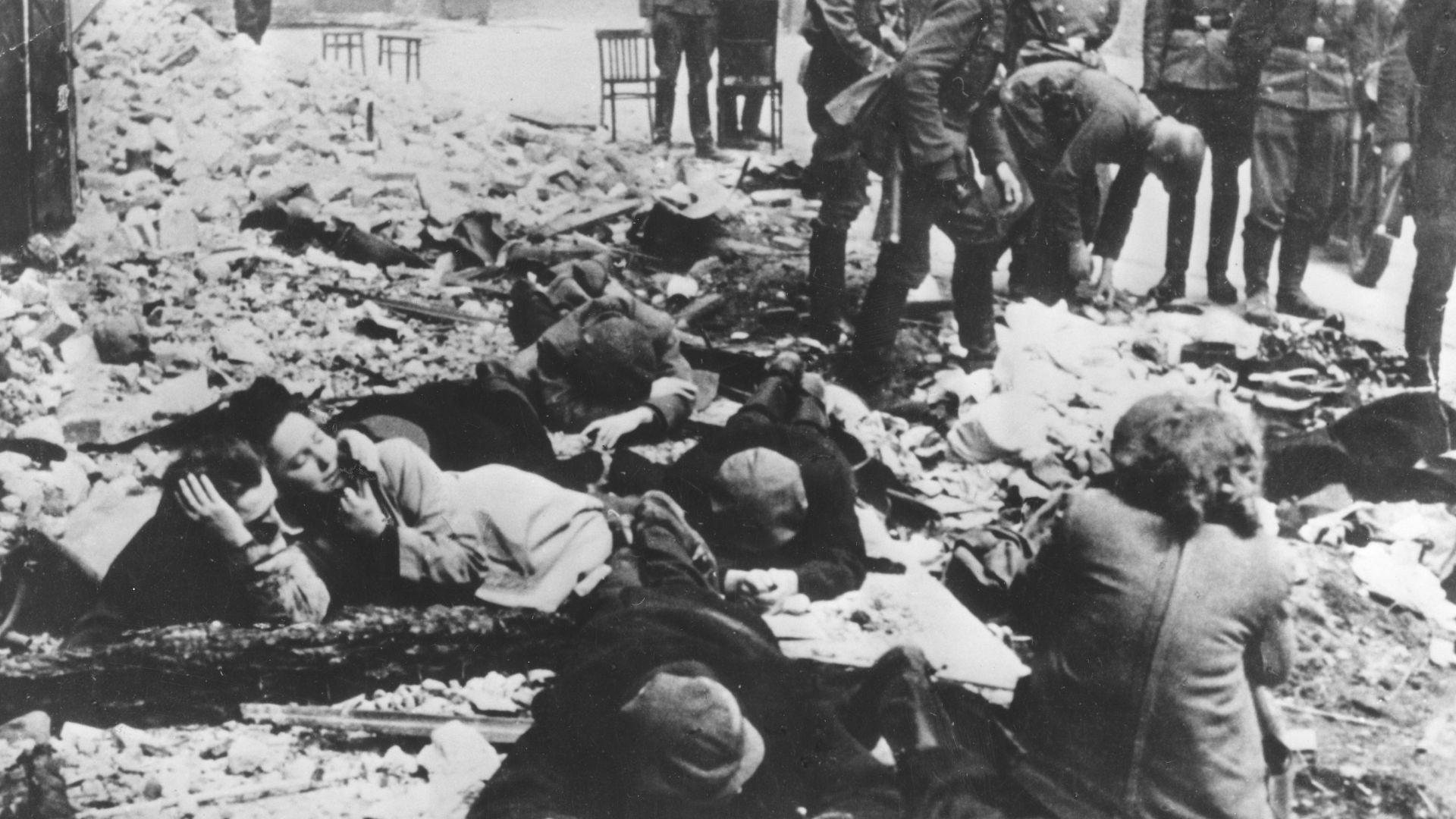 Бъдещите изследвания за Холокоста зависят от едно дело за клевета