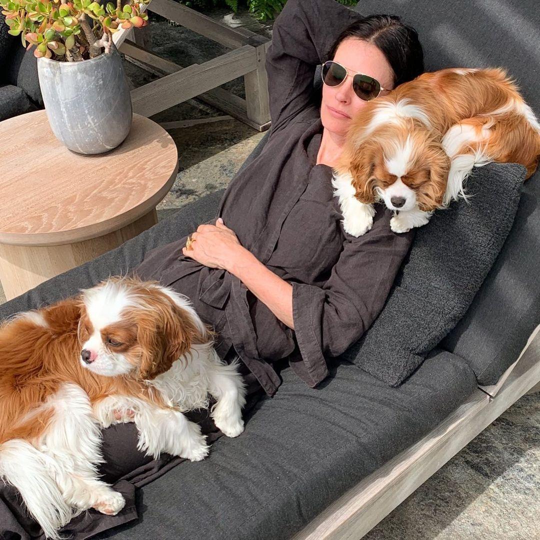 Кортни Кокс с двете си кучета