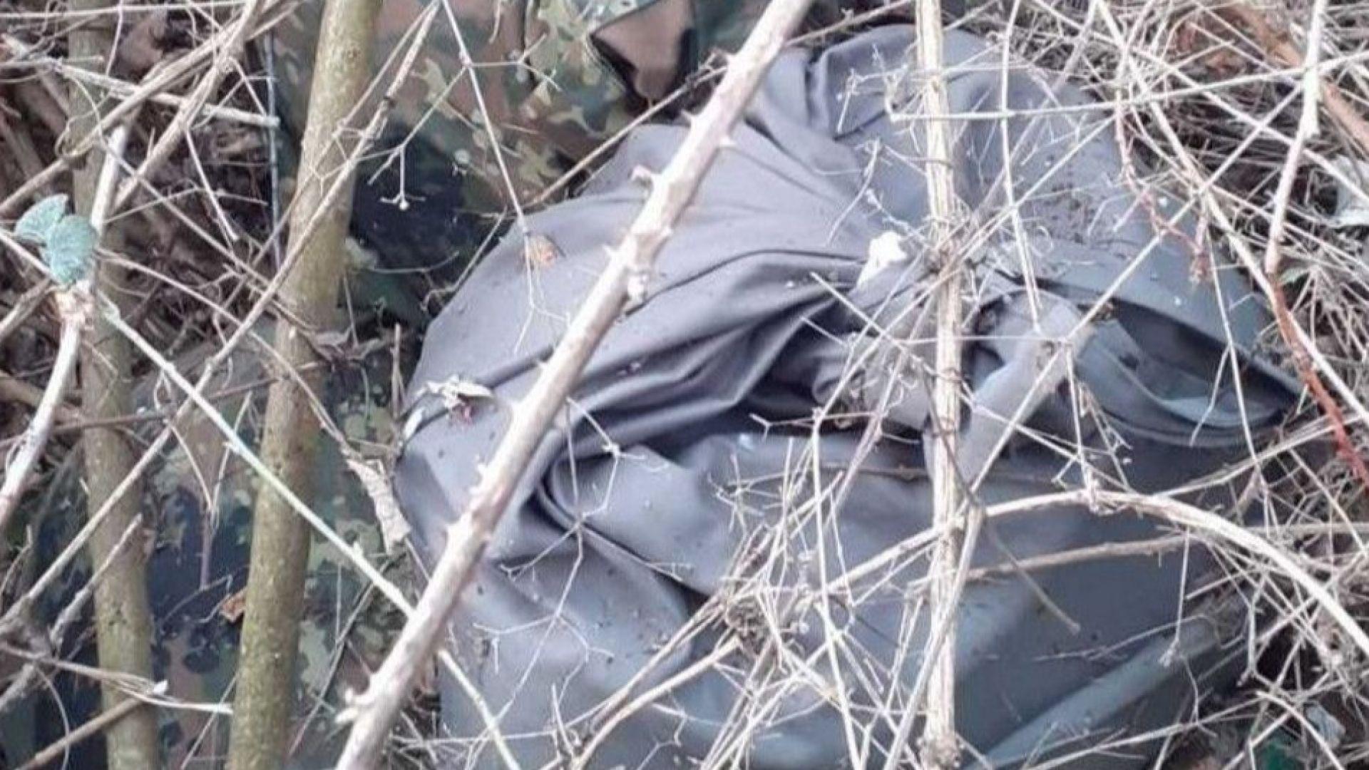 В къпинак край Свиленград откриха 183 кг амфетамини за над 5,5 млн. лв.