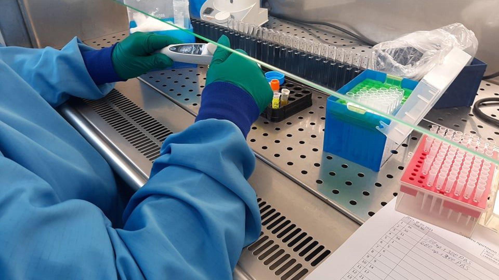 Задържаме плато с около 1000 заразени и 10% положителни проби