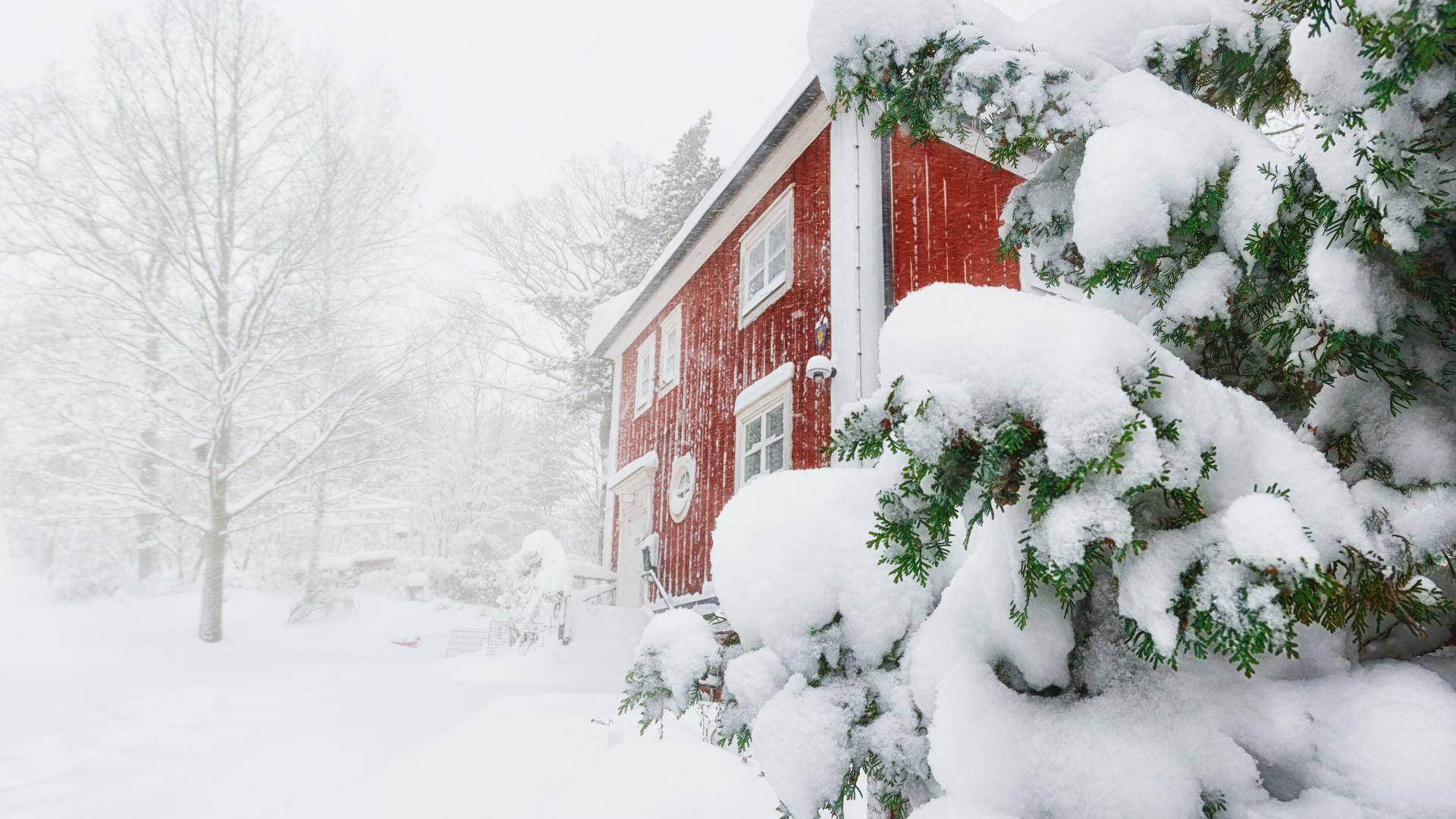 """""""Не пускайте прахосмукачките!"""": ледена зима и недостиг на ток в Швеция"""