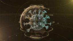 Учени разкриват кои са слабите места на коронавируса и защо някои хора не се заразяват