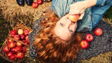 Ябълките са полезни за мозъка
